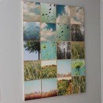 Nature Collage Wall Art