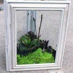 DIY Succulent Garden with Faux Succulents!