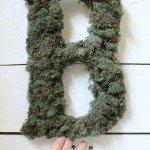 Evergreen Monogram