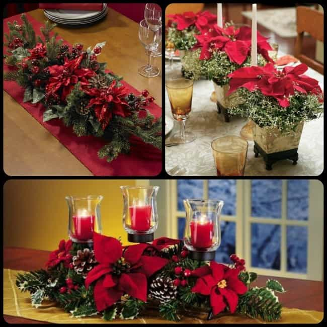 How to decorate your home with fresh poinsettias