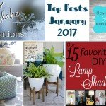 Top Posts for January 2017