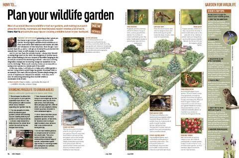 "Discover Wildlife, ""Wildlife Garden"""
