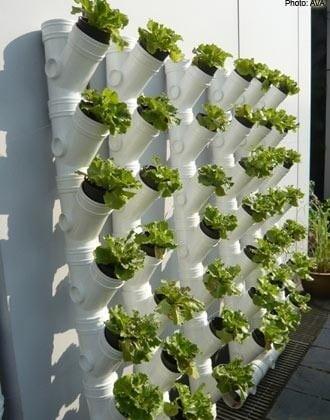 PVC Garden