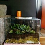 Uncommon Accent Terrarium Table