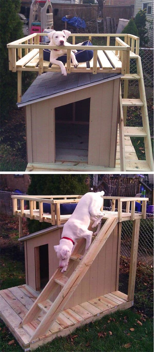 10 diy dog houses so amazing you u0027ll wish you lived in them