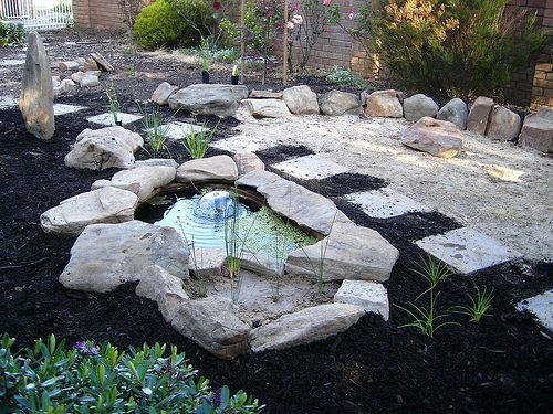 Easy diy pond instructions for your garden for Decorative pond fish crossword