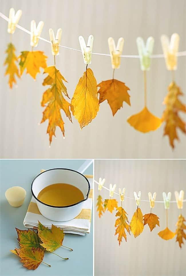 Wax leaves