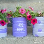 Empty Cans Into Hanging Baskets