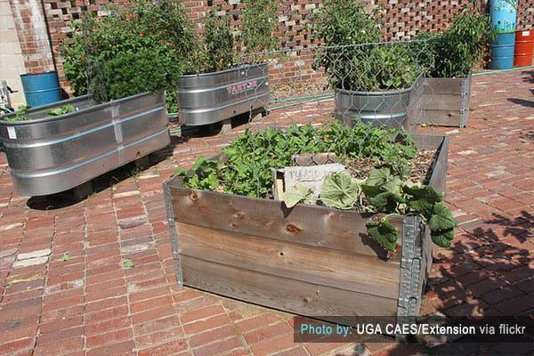 Raised Steel Garden Beds