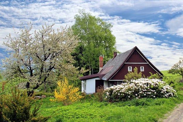 cottage-garden