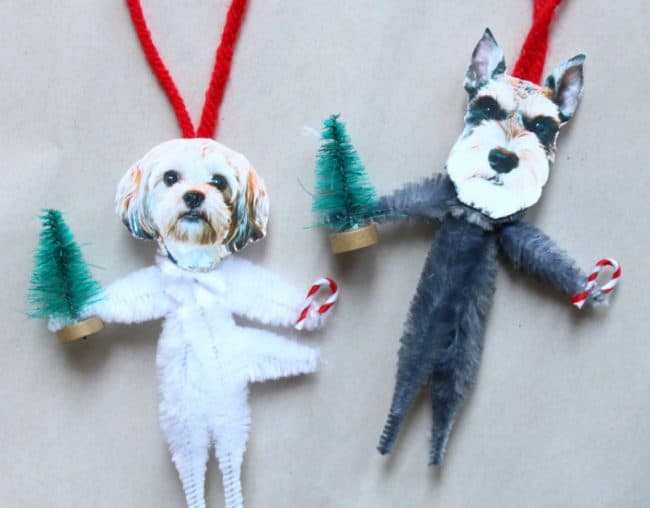 Personalized pet ornaments for the tree