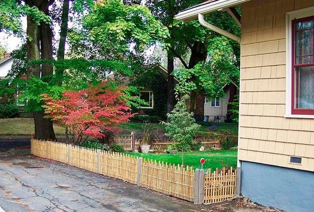 bamboo-fence
