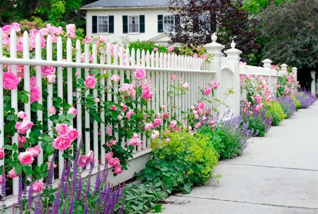 garden-fence-idea