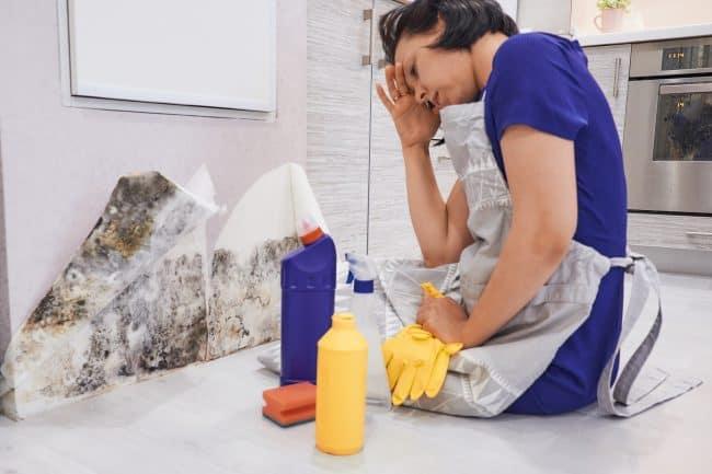 How to treat mold