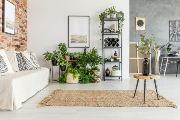 fresh look for your home