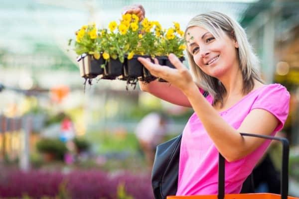 choosing plants for your garden