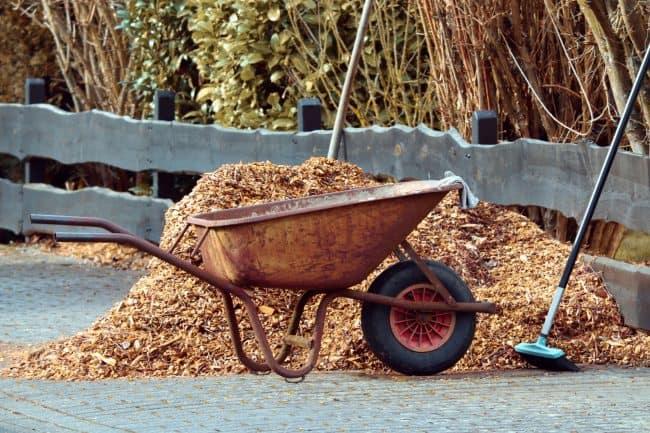 wood chips vs mulch