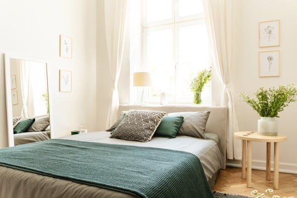 clean bedroom with fresh plants