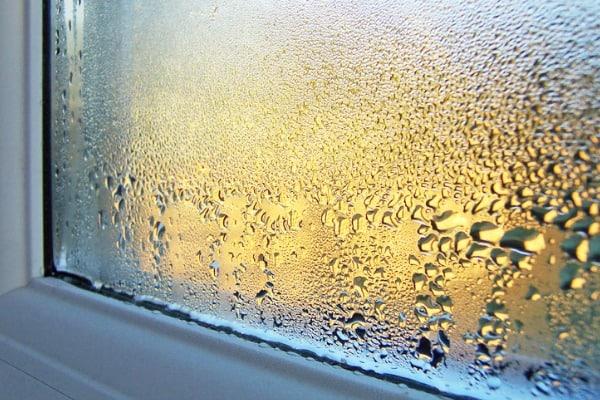 condense on window