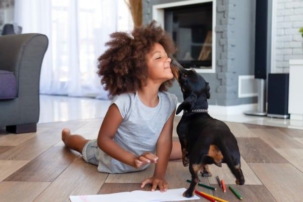 pet and child in beautiful home