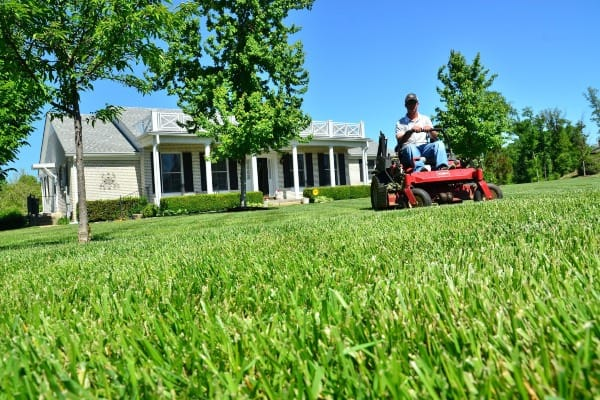 man with lawn mower image