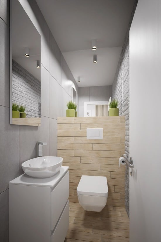 modern small toilette for guest