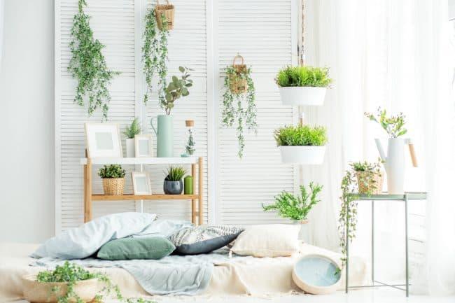 home decoration pieces
