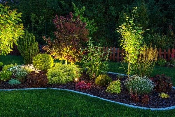 lighted backyard