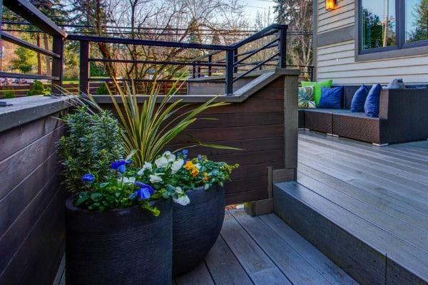 plants-on-deck-color