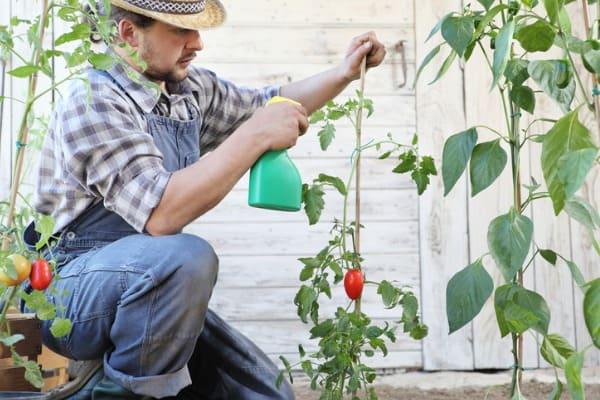 safe-spray-garden