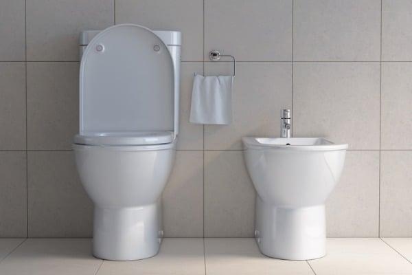 bidet vs regular toilet