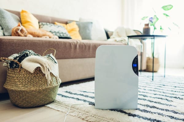 air-purifier-unit-family-room