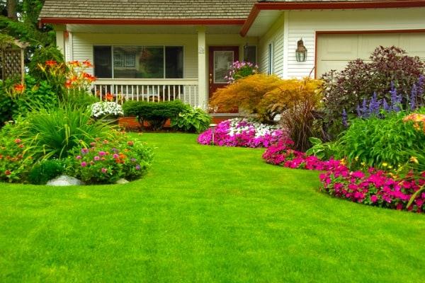 flower-garden-front-yard