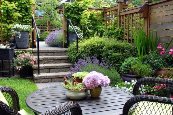 small-garden-on-patio