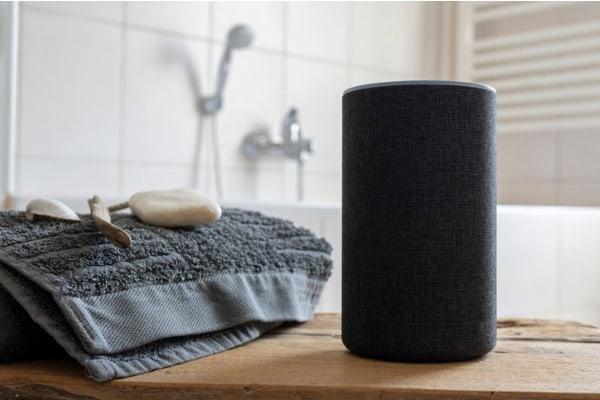 bathroom-speaker-example