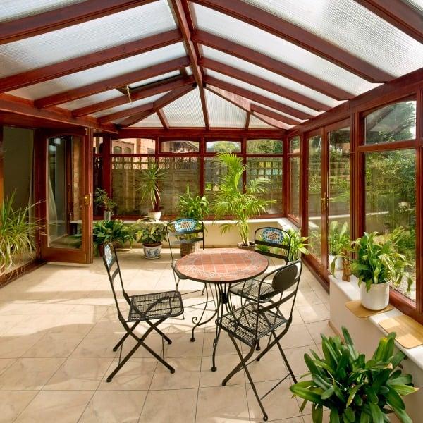 low-light-sun-room-plants