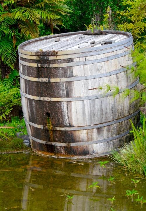 wine-barrel-pond