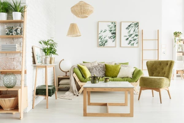 cozy green furniture