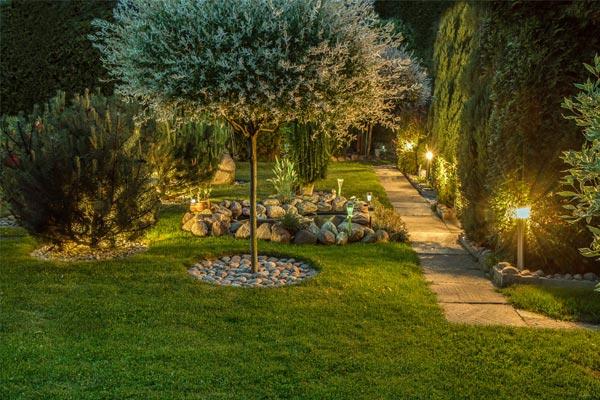 create backyard gardening