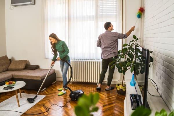 dust-vacuum-home