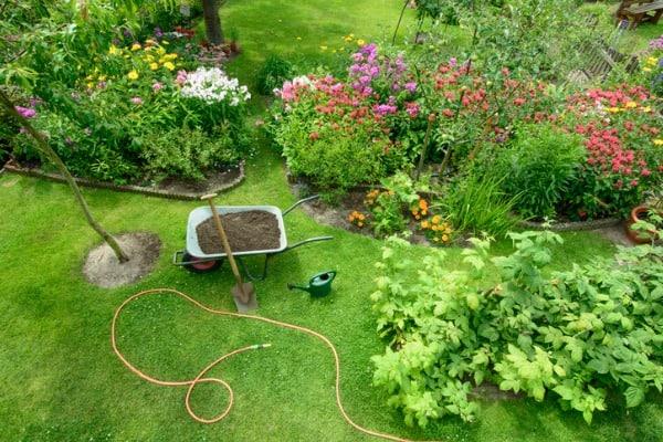 gardening-work-yard
