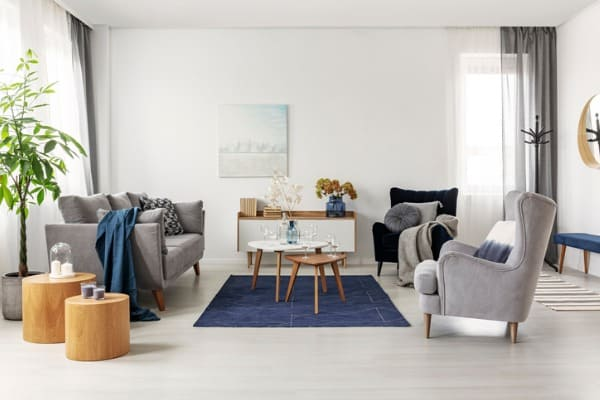 grey and navy blue living room interior with comfortable sofa
