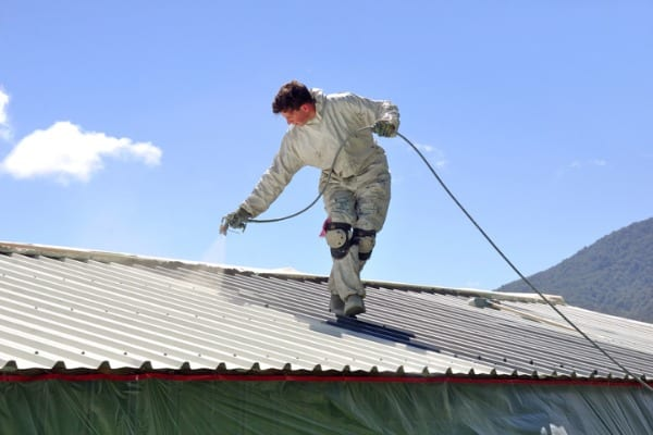 painting-the-roof