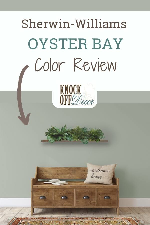 Sherwin Williams Oyster Bay pin