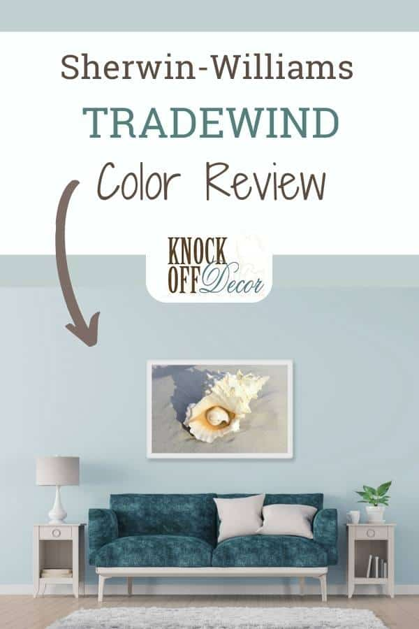 Sherwin Williams Tradewind pin