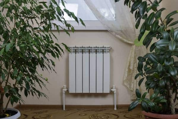 radiator with plants idea