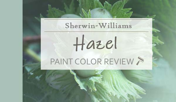 sw hazel paint color review
