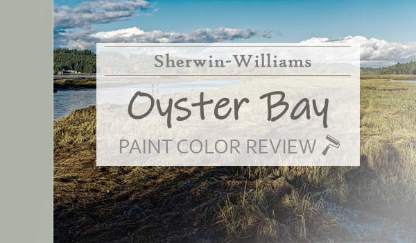 sw oyster bay paint color review