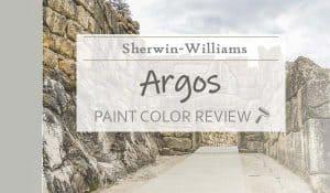 sw argos paint color review