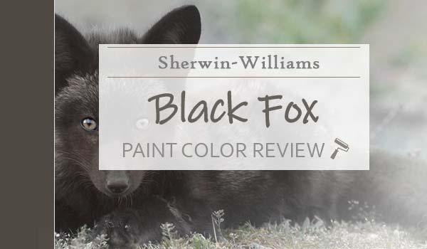 sw black fox paint color review